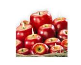 נר תפוח