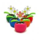 פרח סולארי קטן